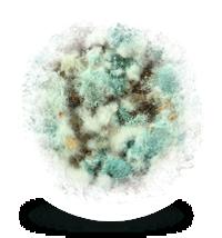 button-dezinfekce